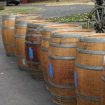 Empty oak barrels that will be used to age this year's zinfandel lot.