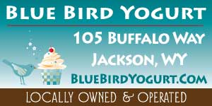 Bluebird Yogurt