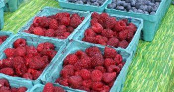 Market Berries