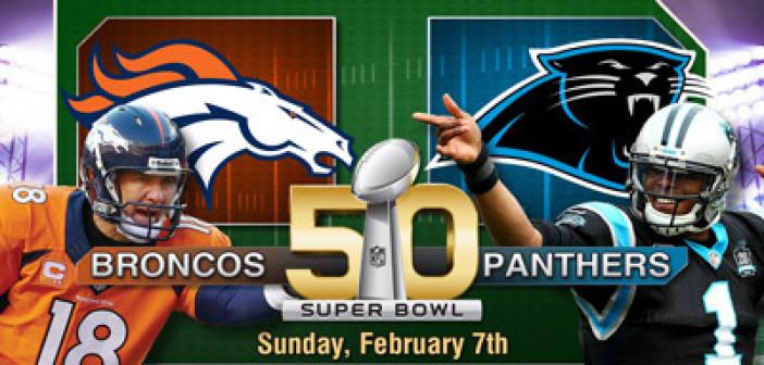 Super Bowl Sunday Round Up