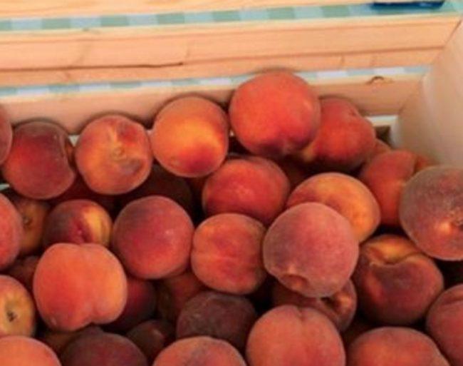 Q Roadhouse Farmers Market Peaches