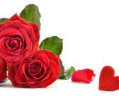 Valentine's Day Happenings