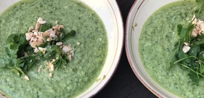 Thai Cucumber Soup