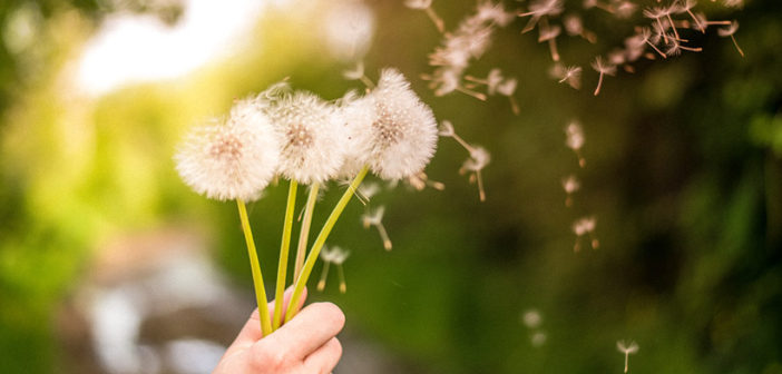 Natural Ways to Deal with Allergies